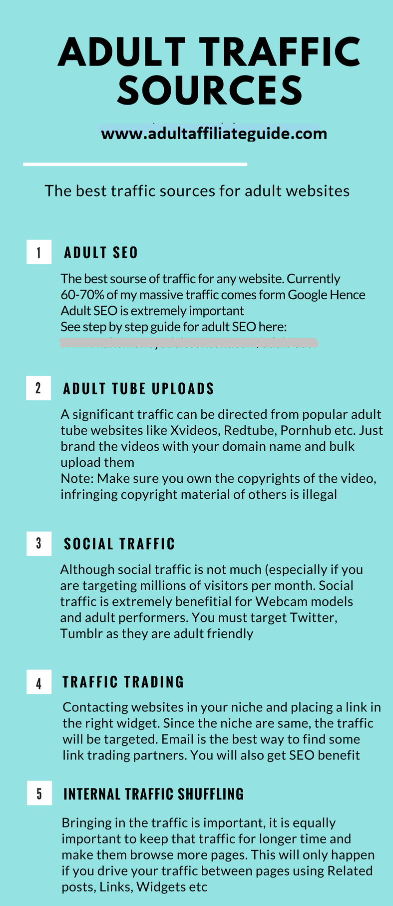 Adult-Traffic-Sources