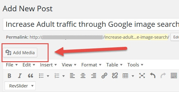 Increase Adult traffic through Google image search add media