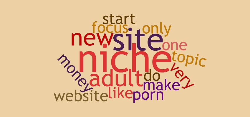 How To Choose A Niche For Your Adult Website