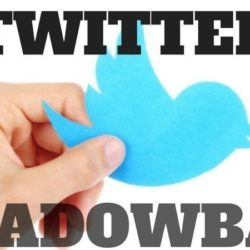 How To Get A Twitter Shadow Ban Removed