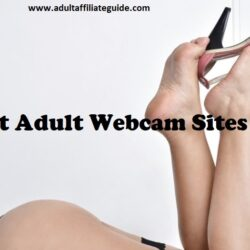 The Top 5 Adult Webcam Sites for 2020